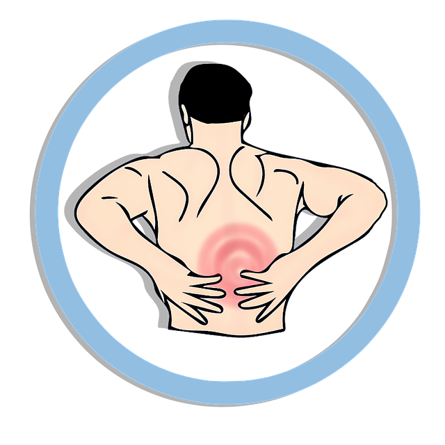 Back Pain Vs Kidney Pain How To Tell The Difference Saratoga Spine