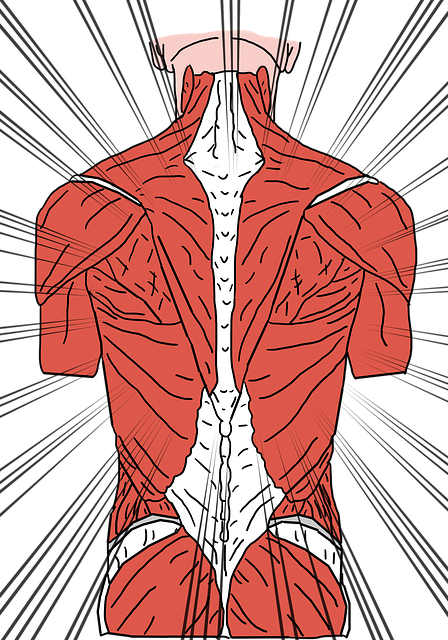 muscle spasms from spinal condition